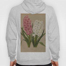 Arendsen, Arentine H. (1836-1915) - Haarlem's Flora 1872 - Hyacinths 2 Hoody