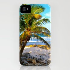 Mexican Palm iPhone (4, 4s) Slim Case