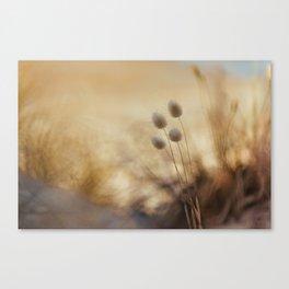 The Quiet Canvas Print