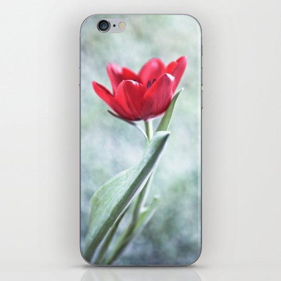 Loveliness iPhone & iPod Skin