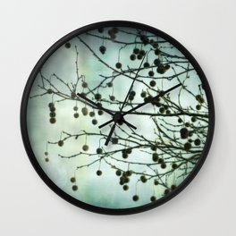 Plane Beauty Wall Clock