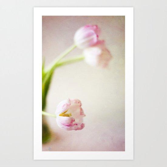 Lone Tulip Art Print