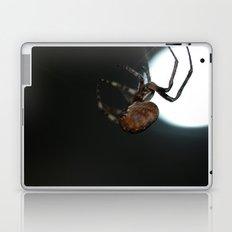 Full Moon Spider Laptop & iPad Skin