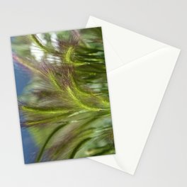 Ripened cheatgrass in green and pink Stationery Cards