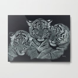 Tiger Kittens Scratchboard by Don Winsor Metal Print