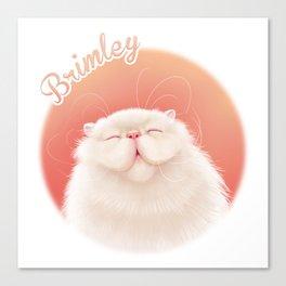 Brimley Smiling Canvas Print