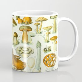Mushroom Vintage Scientific French Language Encyclopedia Lithograph Mushrooms Labeled Diagrams Coffee Mug
