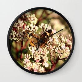 Buckeye Butterfly On Pale Pink Flowers Wall Clock