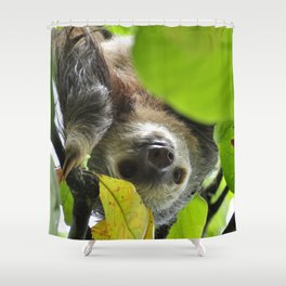 Sloth_20171105_by_JAMFoto Shower Curtain