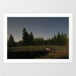 night mares Art Print