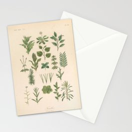 Botany Chart Stationery Cards