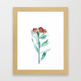 Flower Power #4 Framed Art Print