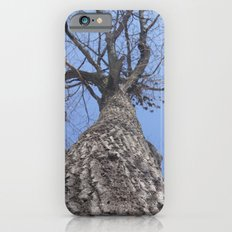 Looking Up iPhone 6s Slim Case