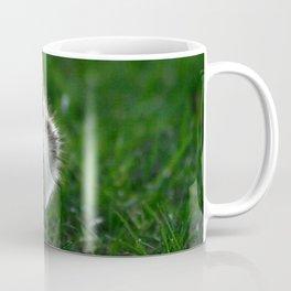 Cute Duckling Walking on a Lawn Coffee Mug
