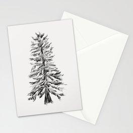 Cedar Tree Stationery Cards