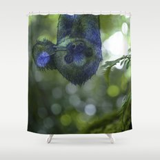 Hang in there Shower Curtain