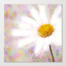 Daisy on Butterflies Canvas Print