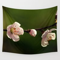 cherry blossoms Wall Tapestries featuring Cherry Blossoms by Ian Bevington