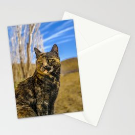 Adult Wild Cat Sitting and Watching Stationery Cards
