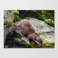 otter Canvas Prints featuring Otter by Lynn Bolt