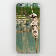 Inspiration of a cattail iPhone & iPod Skin