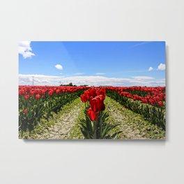 Tulip Town Metal Print