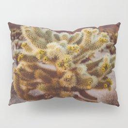 Cholla Cactus Garden XIV Pillow Sham