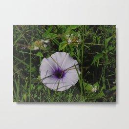 Small violet flower Metal Print