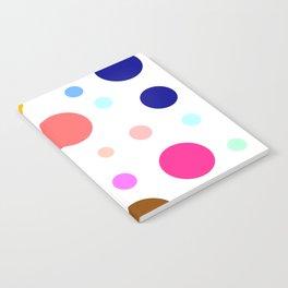 Vancomycin Notebook