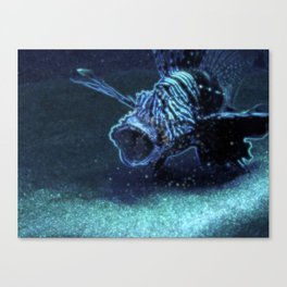 Reef-eater Canvas Print
