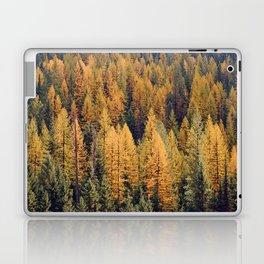 Autumn Tamarack Pine Trees Laptop & iPad Skin