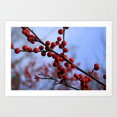 Red Winterberries Art Print