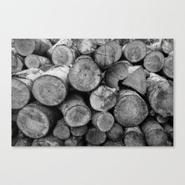 Pile of chopped firewood Canvas Print