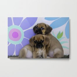 Two Puggle Puppies Cuddling in front of a Background with Hand-painted Daisy Flowers Metal Print