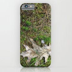Oak Leaf iPhone 6s Slim Case