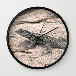 Desert Spiny Lizard, No. 2 Wall Clock