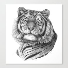 Siberian Tiger G101 Canvas Print
