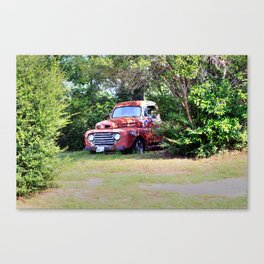1950 Ford F100 Canvas Print