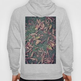 Autumn Leaves Before September Photography Nature Fall Colors Summer #GaneneKPhotography Hoody