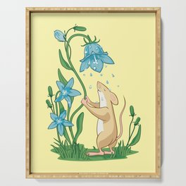 Morning Wash. Field Mouse and Bluebell Serving Tray