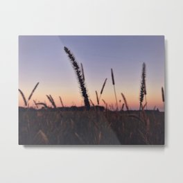 Indiana Sunset - Cattails Metal Print