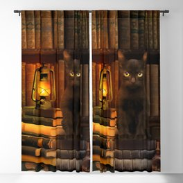 Magic and Herbs Apothecary Book Nook Blackout Curtain