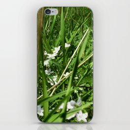 Spring Beauty 12 iPhone Skin
