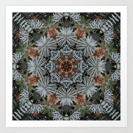 Spruce Cones And Needles Kaleidoscope K4 Art Print