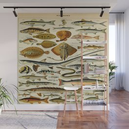 Fish Vintage Scientific Illustration French Language Encyclopedia Lithographs Educational Diagrams Wall Mural