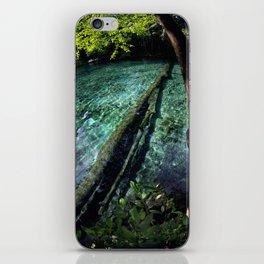 Ginnie Springs Fisheye iPhone Skin