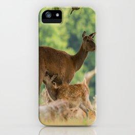 Spring Dear iPhone Case