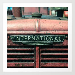 International Grille  Art Print
