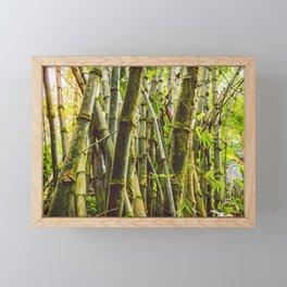 Bamboo Forest Framed Mini Art Print