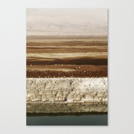 Dead Sea Shore Canvas Print